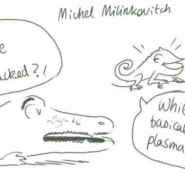 tedxgeneva15-cameleon-crocodile